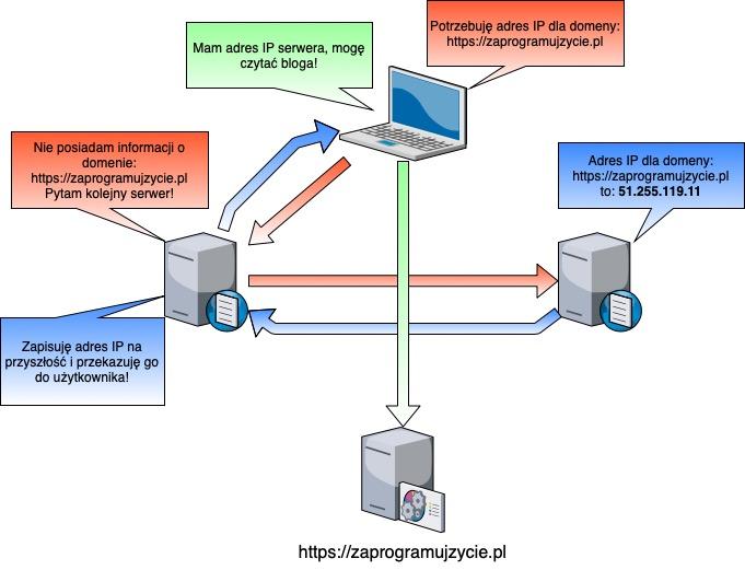Podstawy stron internetowych