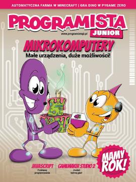 Programista Junior 2